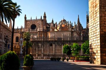 Visita privada: excursión de un día a Sevilla desde Granada