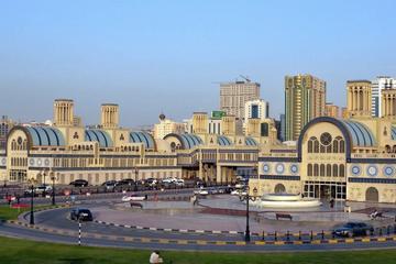 Excursión completa a los Emiratos...