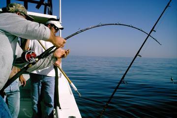 Deep Sea Fishing Off the Coast of Dubai