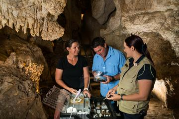 Capricorn Caves Fossil Tour