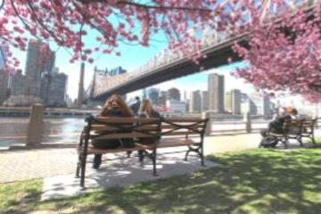Bronx, Queens and Brooklyn Bus Tour with Lunch Upgrade
