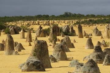 Pinnacles Desert Scenic Flight and Ground Tour