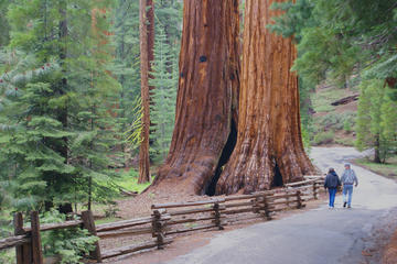 2-Day Yosemite National Park Tour ...
