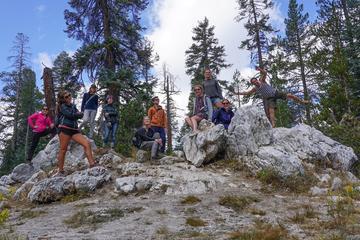 Sierra Nevada Tour of Yosemite and...