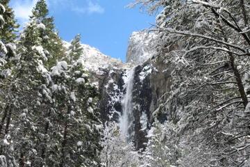 Tour di 2 giorni invernale al Parco Nazionale di Yosemite da San