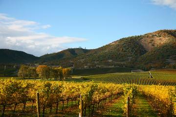 Viagem diurna a região produtora de vinho de Napa e Sonoma mais...