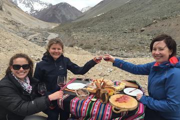 Excursão particular: Montanhas dos Andes com degustação de vinhos...