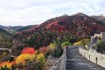 Coach Tour: Mutianyu Great Wall Day Trip with Lunch