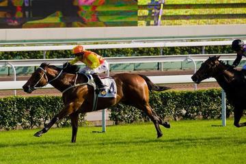 Private Tour: Hong Kong Highlights with Jockey at Wan Chai