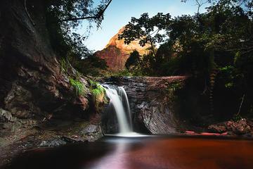 Excursión de dos días al Parque Nacional Amboro desde Santa Cruz