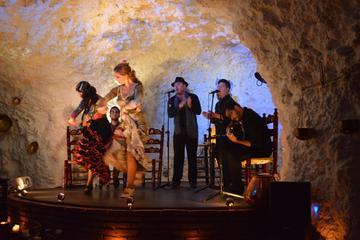 Flamenco Show in a Cave-Restaurant in Granada