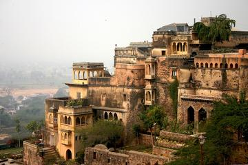 Private Day Trip to Neemarana Fort Palace Including Ziplining at...