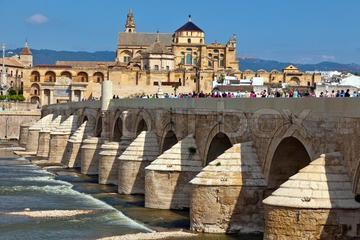 Visite officielle de Córdoba 3 heures