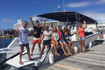 South Coast Scenic Small-Group Boat Tour from Ponta Delgada