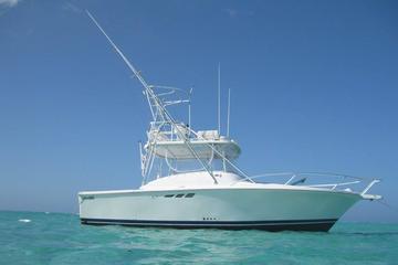 The top 10 caribbean fishing charters tours tripadvisor for Deep sea fishing grand cayman