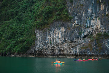Halong Bay Full-Day Guided Tour Including Cruise, Kayaking and Lunch...