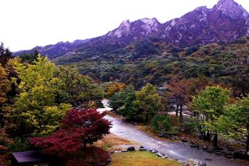Private Seoraksan and Sokcho City Day...