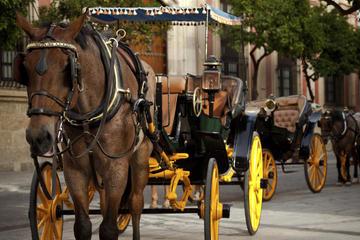 Passeio particular de carruagem e cavalo em Sevilha
