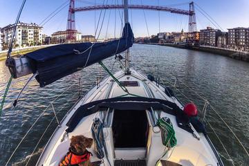 Excursión en barco en la ría de Bilbao