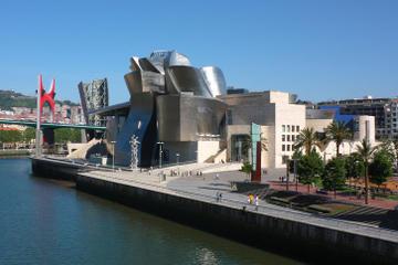 Tour privato: Museo Guggenheim di