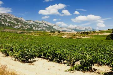 Vitoria e la regione vinicola di Rioja