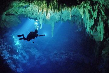 Cenotes 2-Tank Dive for Certified...