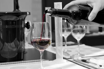 Atelier de fabrication du vin avec dégustation de vins de Bordeaux et...