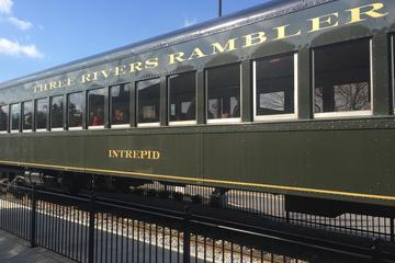 Knoxville's Vintage Baseball Express Train