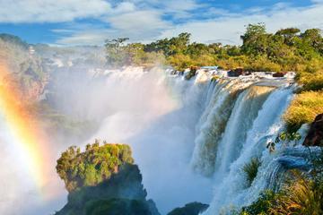 Day Trip to Iguazu Falls and Jungle...