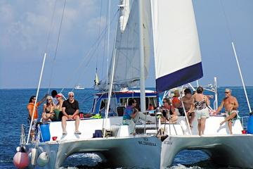 Catamaran Sail and Snorkel Tour in ...