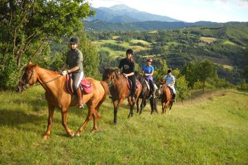 Horseback Riding Private Tour in Sicilian Countryside and Traditional Lunch at Farmhouse on Etna Slope