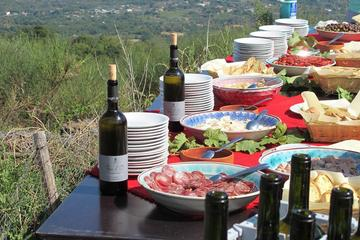 Noto Wineries Private Tour from Syracuse - Best Wineries and Tonnara Visit in Marzamemi