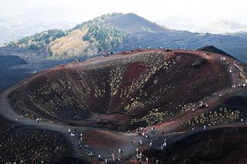 Private tour from Catania: Etna Volcano and Lunch at Etna Winery