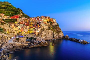 Small Group Tour: Cinque Terre with the leaning tower of Pisa