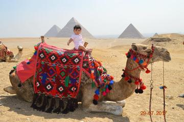 Layover tour in Cairo Visit Giza Pyramids and Sakkara and Dahshour and memphis