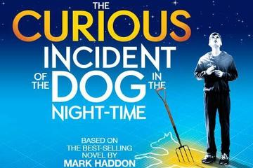 Espectáculo teatral The Curious Incident of the Dog in the Night-Time