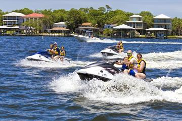 Orange Beach Waverunner Dolphin Tour