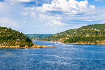 Croisière touristique dans le fjord d'Oslo