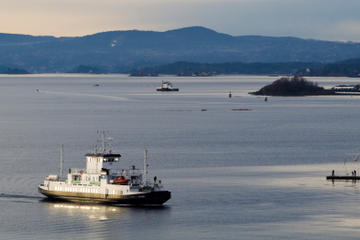 Kustexcursie Oslo: Sightseeingcruise langs de fjorden van Oslo