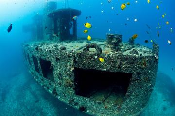 Oahu Shore Excursion: Atlantis Submarine