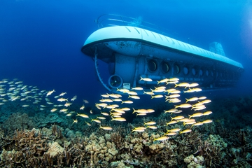 Tur med Atlantis-ubåt i Oahu