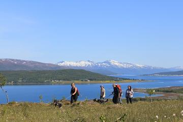 Hiking With Huskies from Tromso