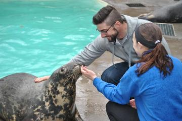 Aquarium of Niagara: Meet a Seal Experience