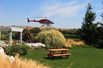 VIP da Viator: Napa de helicóptero...