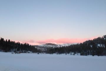Book Lake Tahoe Snowshoeing Tour on Viator