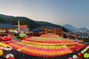 3-Day Round-Trip Tour from Busan to Gyeongju with Small Group