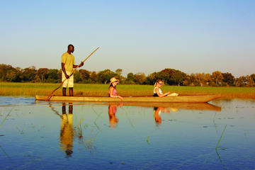 Highlights of Botswana Safari