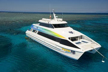 Great Barrier Reef Eco Snorkel and Dive Cruise from Cairns Including...
