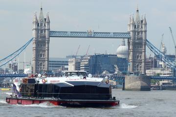 Cutty Sark und Besichtigungs-Bootsfahrt durch London auf der Themse