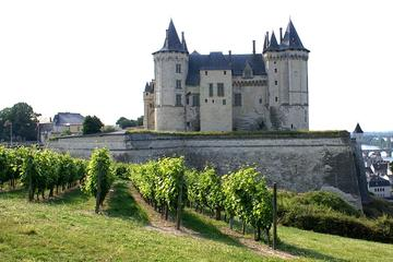 Small Group Wine-Day trip from Paris...